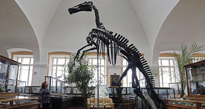 Посетитель смотрит на скелет динозавра. Архивное фото