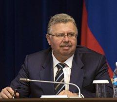 Глава Федеральной таможенной службы РФ Андрей Бельянинов. Архивное фото