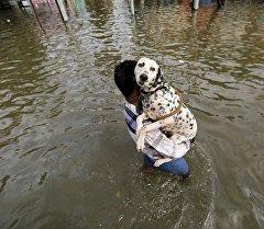 Человек с собакой во время наводнений. Архивное фото