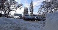 Автотыгын, жол кайгуул кызматынын инспекторлору – Бишкектеги жума күн