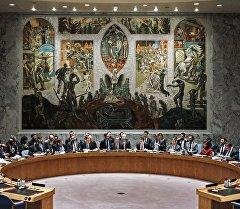 Совет Безопасности ООН в Нью-Йорке. Архивное фото