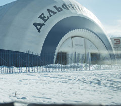 Дельфинарий в городе Бишкек. Архивное фото