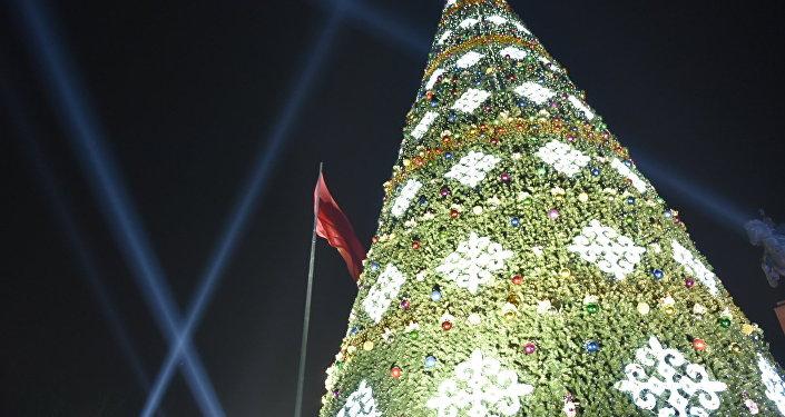 Диаметр у основания 12 метров. Само дерево было привезено из Китая.
