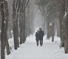 Парень с девушкой на одном из аллей города Бишкек. Архивное фото
