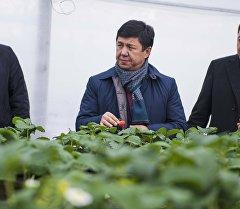Премьер-министр Темир Сариев күнөсканада. Архив