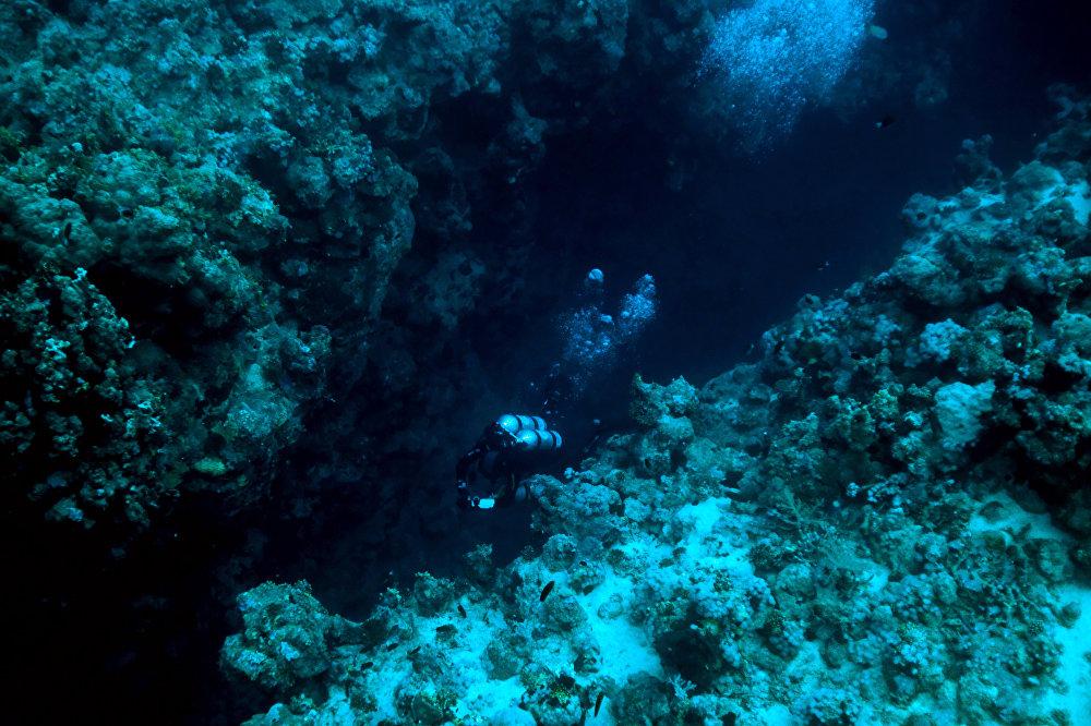что находится на самом дне океана фото кто-то