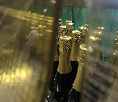 Шампан чыгаруучу завод. Архив