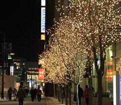 Японияда жаңы жылдык кооздолгон көчө.