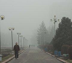 Прохожие в туманную погоду в Бишкеке. Архивное фото
