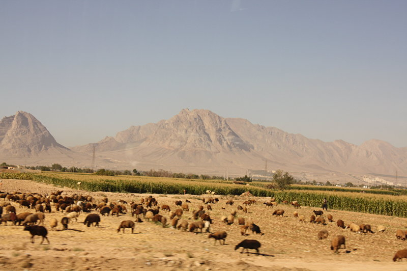 Типичный пейзаж останов (провинций) Кум и Исфахан
