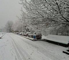 Снежная погода в Бишкеке. Архив