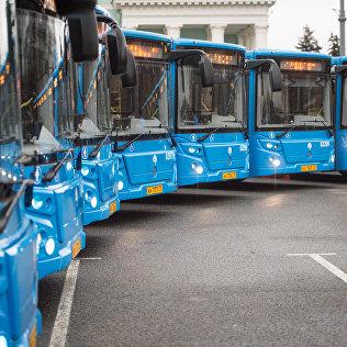 Новые автобусы на стоянке. Архивное фото