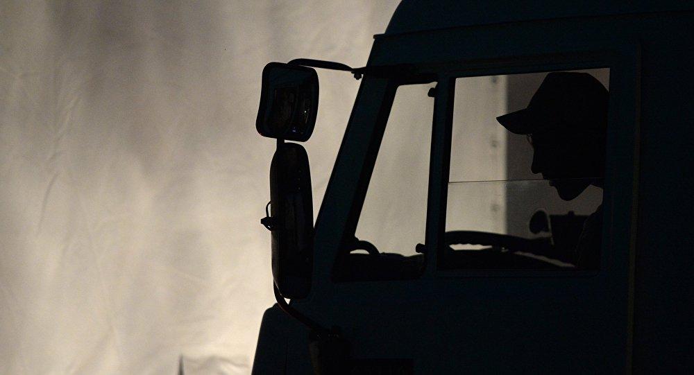 Водитель фуры. Архивное фото
