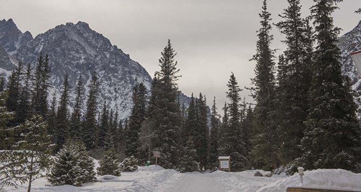 Лучшие альпинисты пройдут в отбор в высотную сборную команду по альпинизму в рамках проекта Высота.