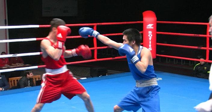 Мээни чыгара чапчудай соккулар – Бишкекте бокс боюнча эл аралык турнир