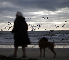 Женщина с собакой на берегу моря в городе Порнише, Франция.