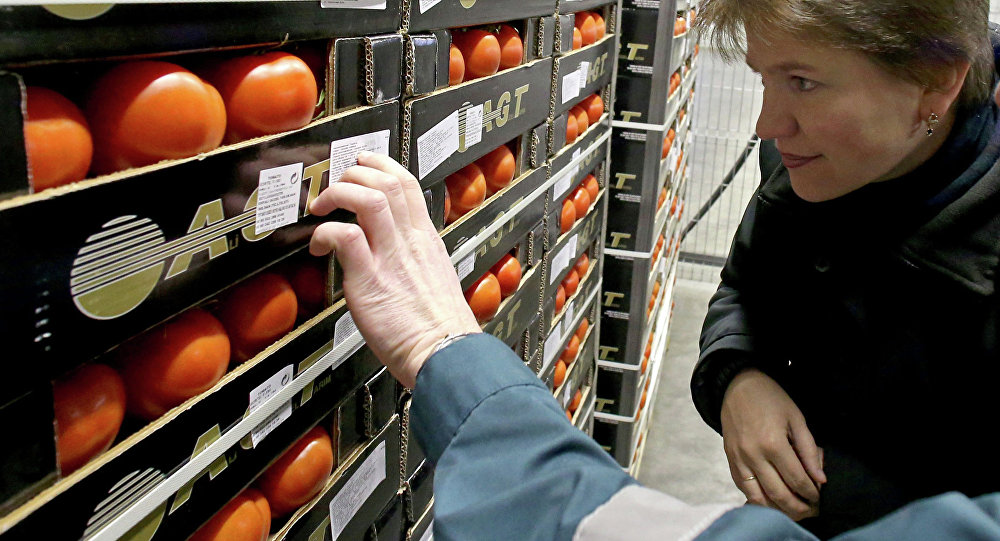 Работники таможенного поста досматривают партию помидоров. Архивное фото