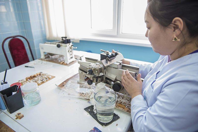 Патологоанатом готовит частицы ткани  для анализа