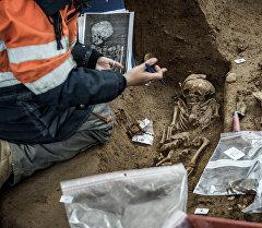 Археолог казуу ишетри учурунда. Архив
