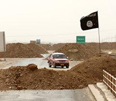 Ислам кыймылы террордук уюмунун желеги. Архивдик сурөт