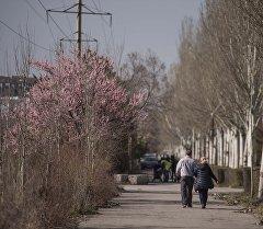 Жители Бишкека на одном из улиц столицы. Архивное фото