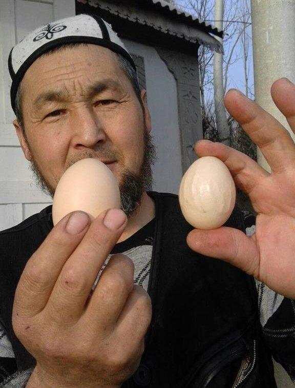 Обычное и найденное в Оше яйцо с похожим надписем Аллах