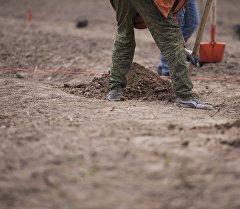 Рабочий копает землю. Архивное фото