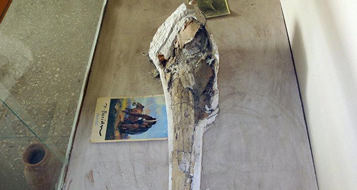 В 1980 году на территории Кара-Бууринского района Таласской области был найден осколок бивня мамонта.