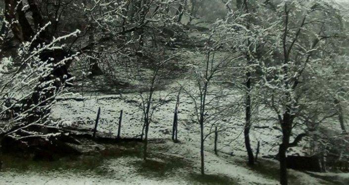 В Аксыйском районе Джалал-Абадской области выпал снег