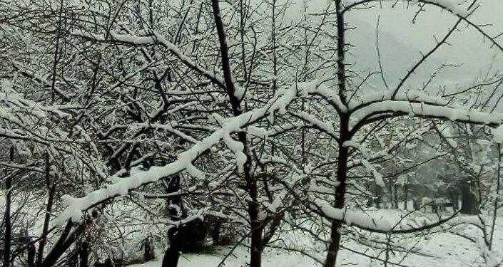 По данным Кыргызгидромета, в целом по области 17-19 марта ожидаются дожди, в предгорных и горных районах снег, местами интенсивные осадки.