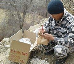 Ученые на месте находки останков костей мамонта в Иссык-Кульской области. Архивное фото