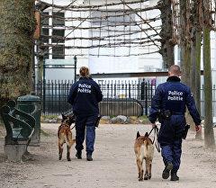 Бельгия полиция кызматкерлери. Архивдик сүрөт