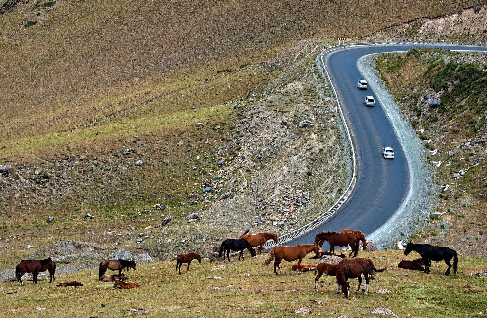 Перевал Тоо-Ашуу на автодороге Бишкек — Ош
