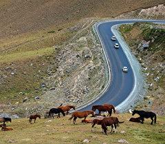 Перевал Тоо-Ашуу на автодороше Бишкек - Ош