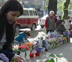 В Бишкеке продолжается акция добра Купи букет у бабушки