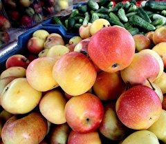 Яблоки на сельскохозяйственной ярмарке. Архивное фото