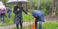Коллектив Sputnik сажал деревья в Карагачевой роще