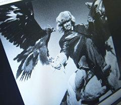 Фото из альбома Eagle clan фотографа из Китая Чэн Жифен