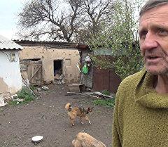 Пожилой бишкекчанин стал бездомным, чтобы спасать брошенных собак
