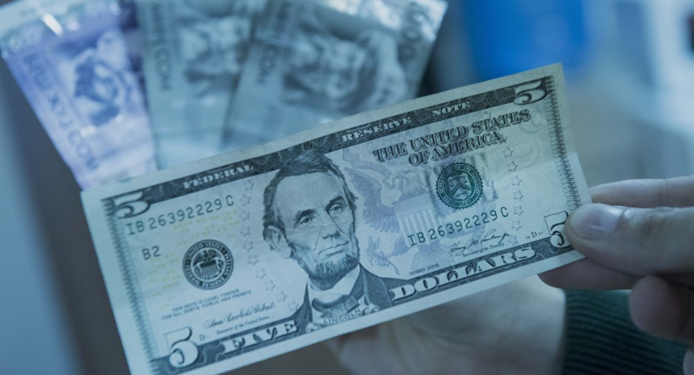 Доллар жана сом валюталары. Архивдик сүрөт