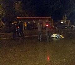 Насмерть сбитый пешеход в селе Лебединовка