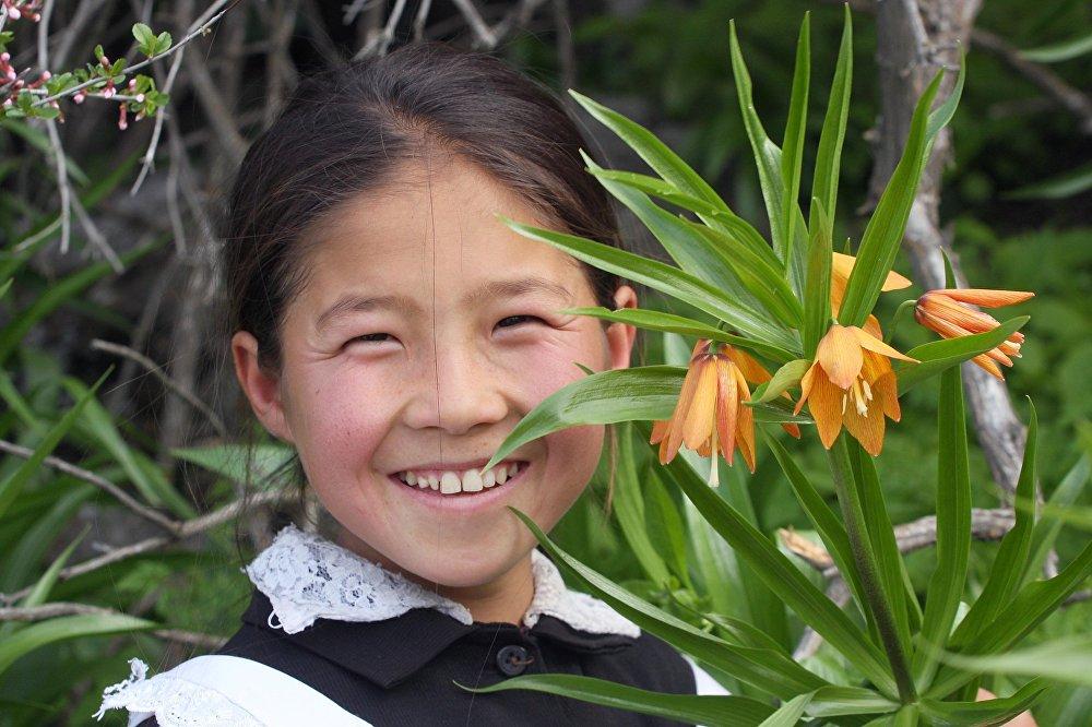 цветок айгуль в картинках