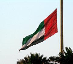 Флаг Объединённых Арабских Эмиратов. Архивное фото