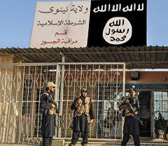 Ислам мамлекети террордук тобунун согушкерлери. Архив