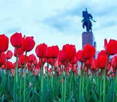 Бишкек шаарынын борборунда бөлөнгөн жоогазын.