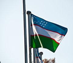 Өзбекстандын желеги, архивдик сүрөт