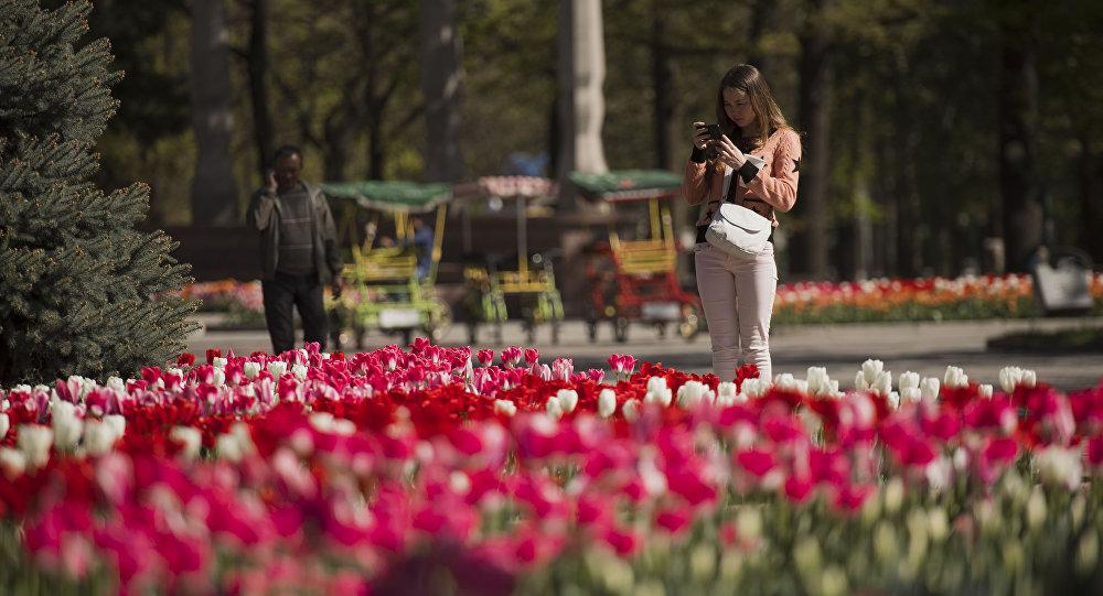 Девушка с телефоном на фоне тюльпанов. Архивное фото