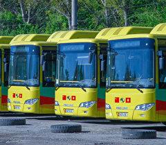 Китайские автобусы в Бишкеке. Архивное фото