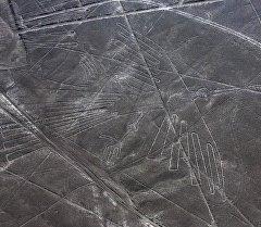 Геоглиф Кондора на плато Наска в Перу. Архивное фото