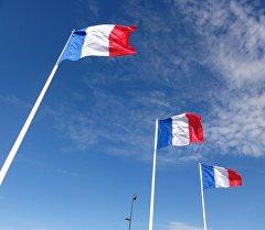 Франциянын желеги. Архив